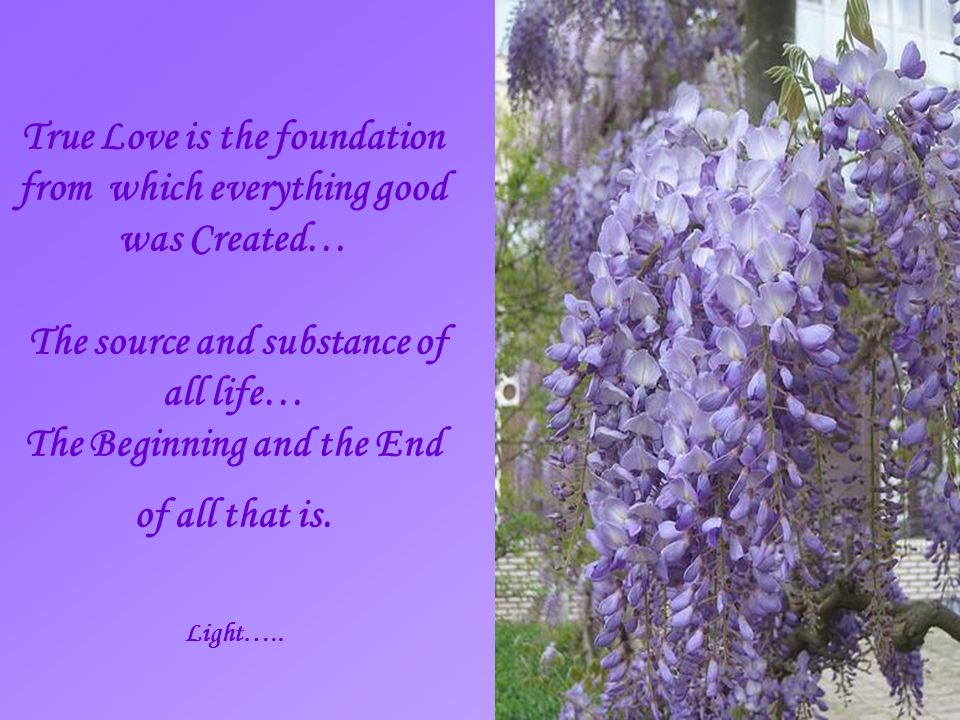 True Love is the foundation from which everything good was Created… The source and substance of all life… The Beginning and the End of all that is.