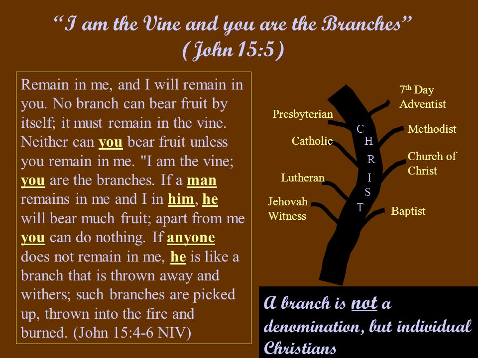 Presbyterian Catholic Baptist Church of Christ Methodist 7 th Day Adventist Lutheran Jehovah Witness C H I R T S I am the Vine and you are the Branches (John 15:5) Remain in me, and I will remain in you.
