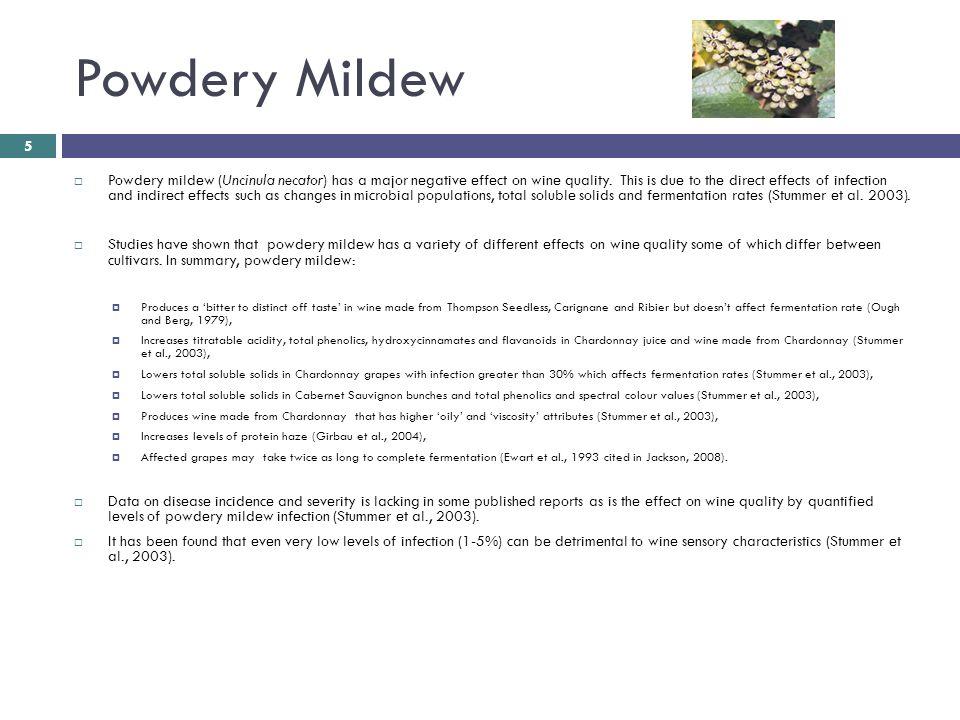 Powdery Mildew  Powdery mildew (Uncinula necator) has a major negative effect on wine quality.