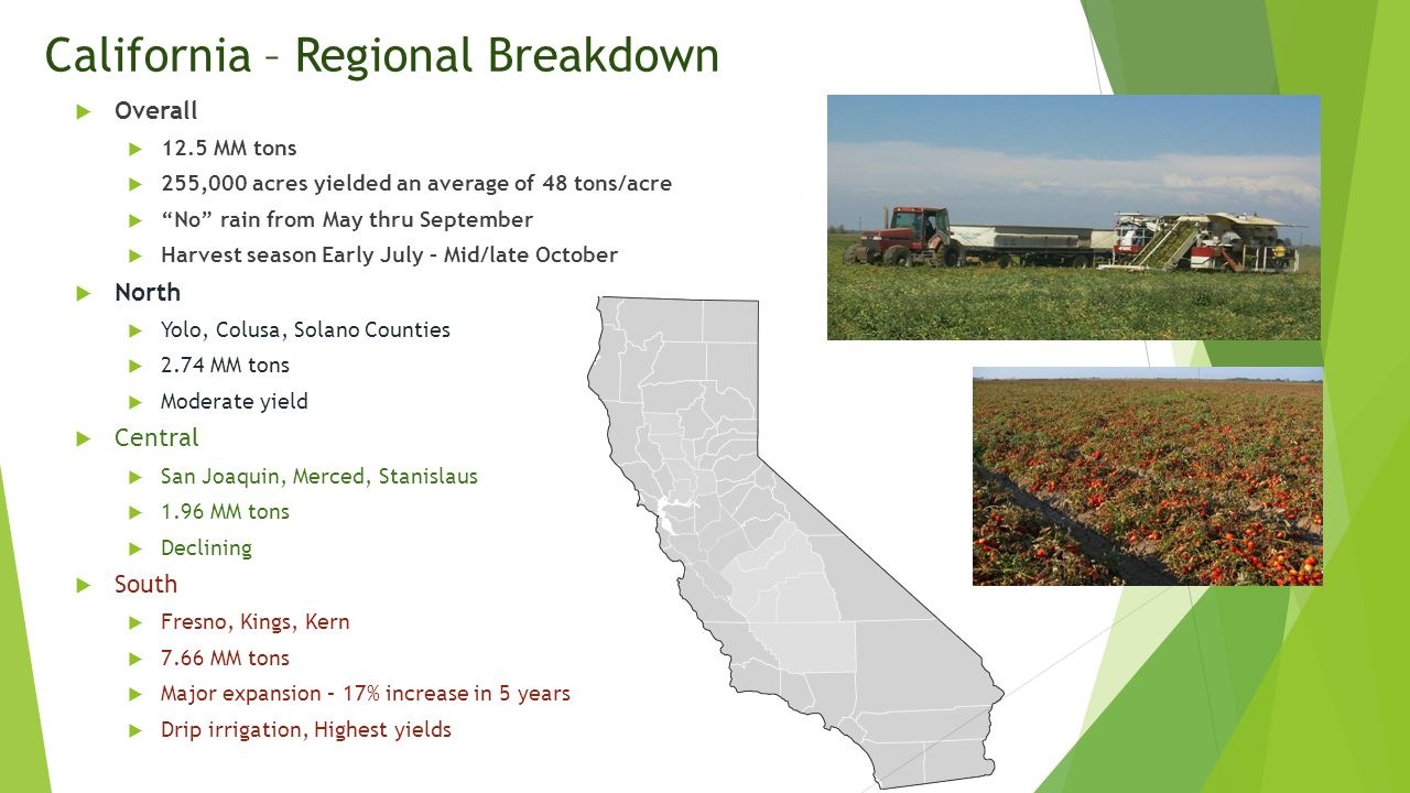 California – Regional Breakdown  Overall  12.5 MM tons  255,000 acres yielded an average of 48 tons/acre  No rain from May thru September  Harvest season Early July – Mid/late October  North  Yolo, Colusa, Solano Counties  2.74 MM tons  Moderate yield  Central  San Joaquin, Merced, Stanislaus  1.96 MM tons  Declining  South  Fresno, Kings, Kern  7.66 MM tons  Major expansion – 17% increase in 5 years  Drip irrigation, Highest yields