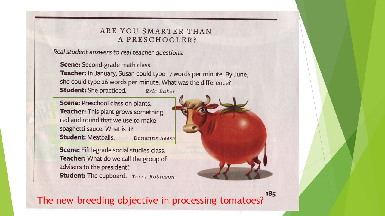 The new breeding objective in processing tomatoes