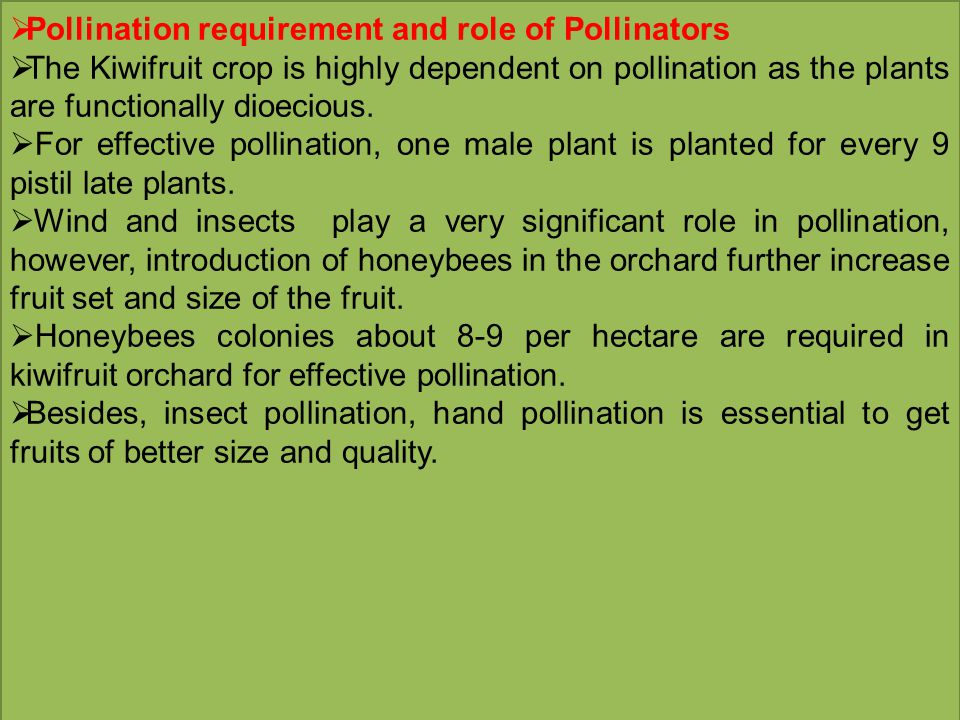  Pollination requirement and role of Pollinators  The Kiwifruit crop is highly dependent on pollination as the plants are functionally dioecious.