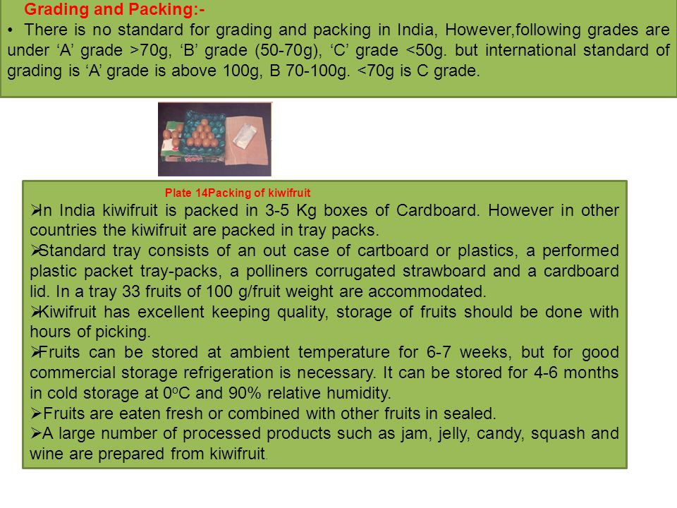 Grading and Packing:- There is no standard for grading and packing in India, However,following grades are under 'A' grade >70g, 'B' grade (50-70g), 'C