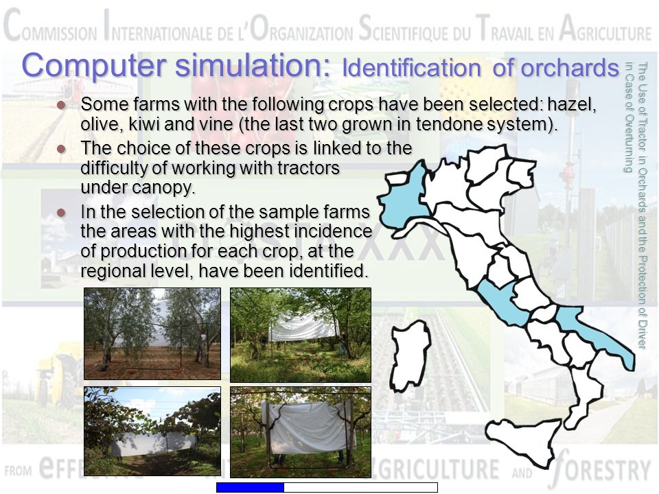 Computer simulation: Identification of orchards The Use of Tractor in Orchards and the Protection of Driver in Case of Overturning Some farms with the following crops have been selected: hazel, olive, kiwi and vine (the last two grown in tendone system).