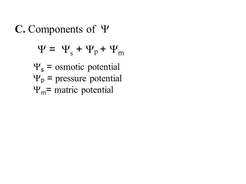  =  s +  p +  m  s = osmotic potential  p = pressure potential  m = matric potential C.