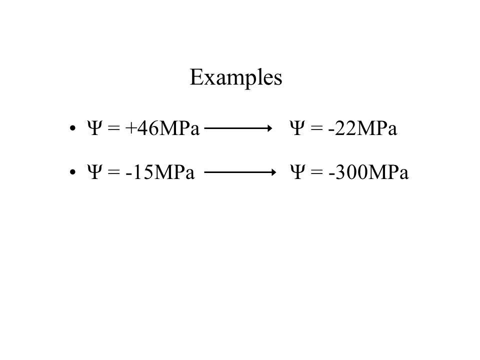 Ψ = -15MPa Ψ = -300MPa Examples Ψ = +46MPa Ψ = -22MPa