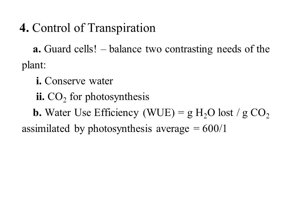 a. Guard cells. – balance two contrasting needs of the plant: i.