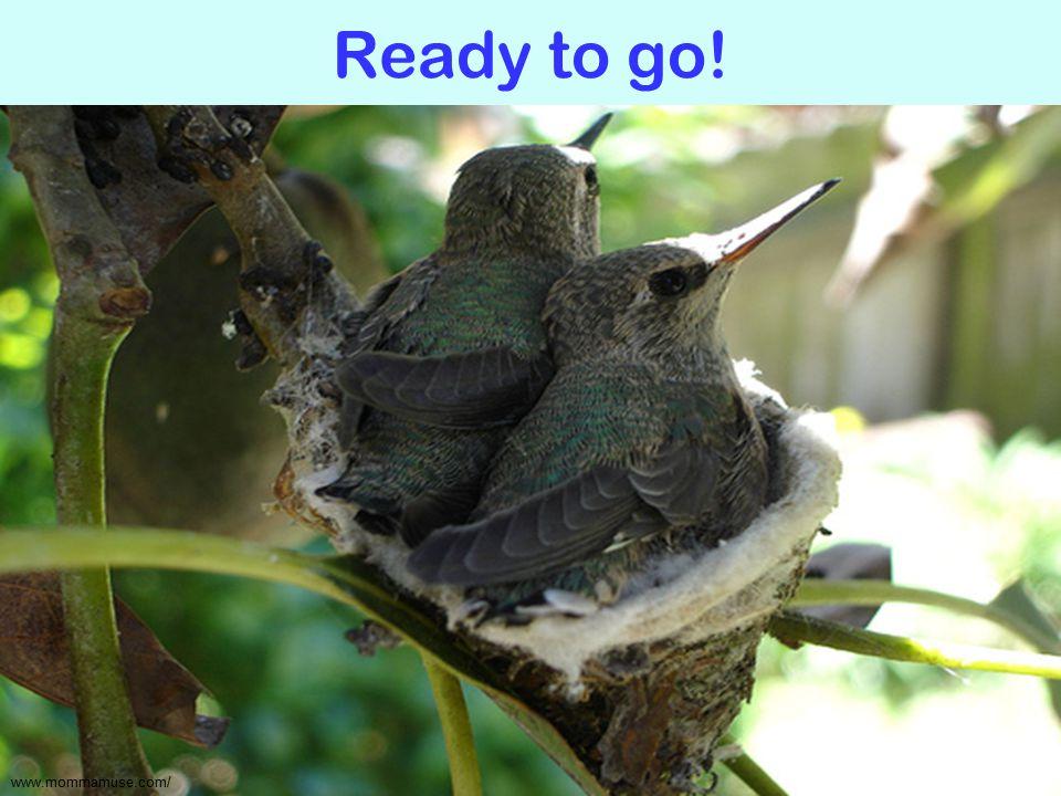 Ready to go! www.mommamuse.com/