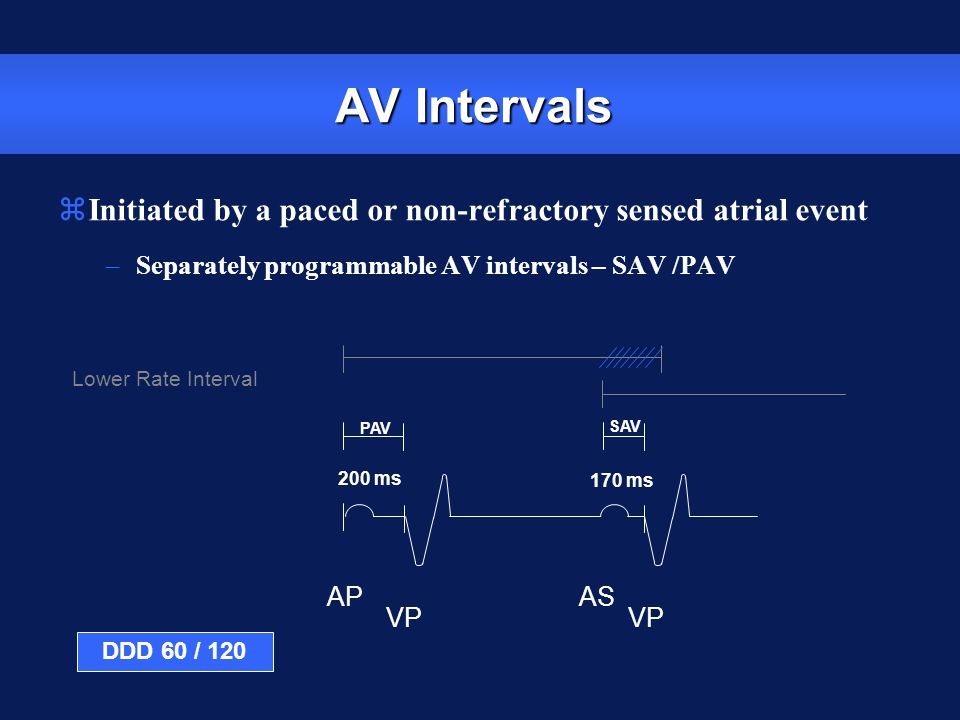 AP VP AS VP PAV SAV 200 ms 170 ms Lower Rate Interval AV Intervals zInitiated by a paced or non-refractory sensed atrial event –Separately programmabl