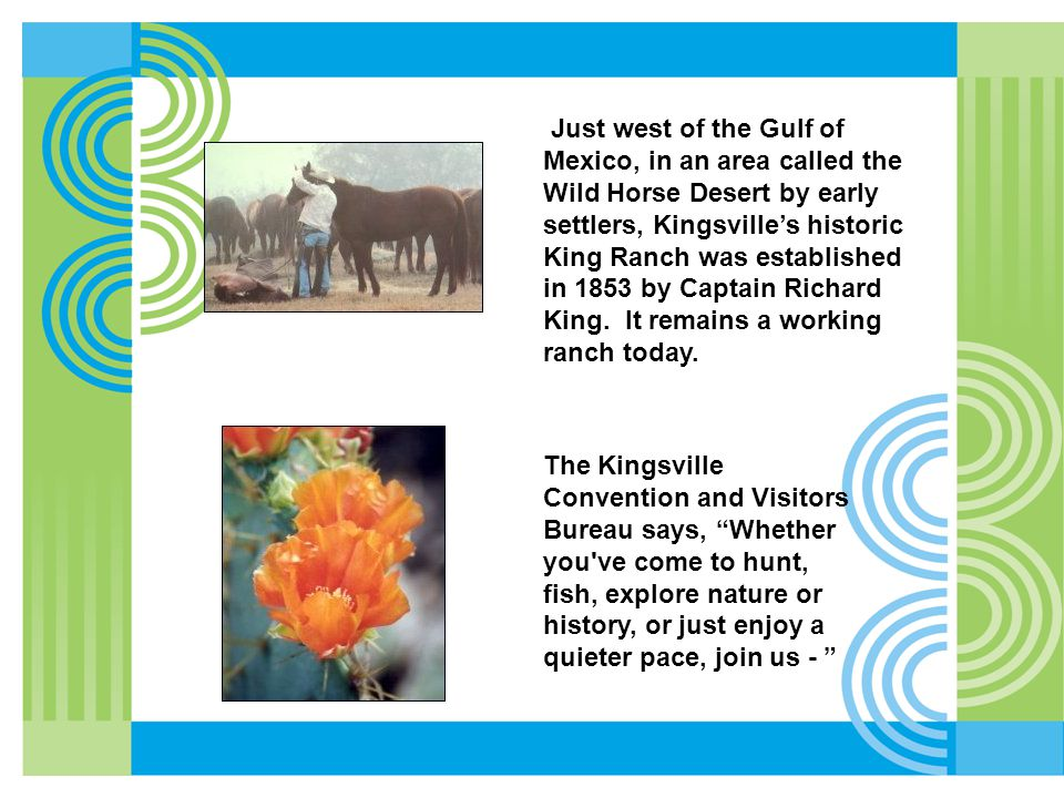 Just west of the Gulf of Mexico, in an area called the Wild Horse Desert by early settlers, Kingsville's historic King Ranch was established in 1853 by Captain Richard King.