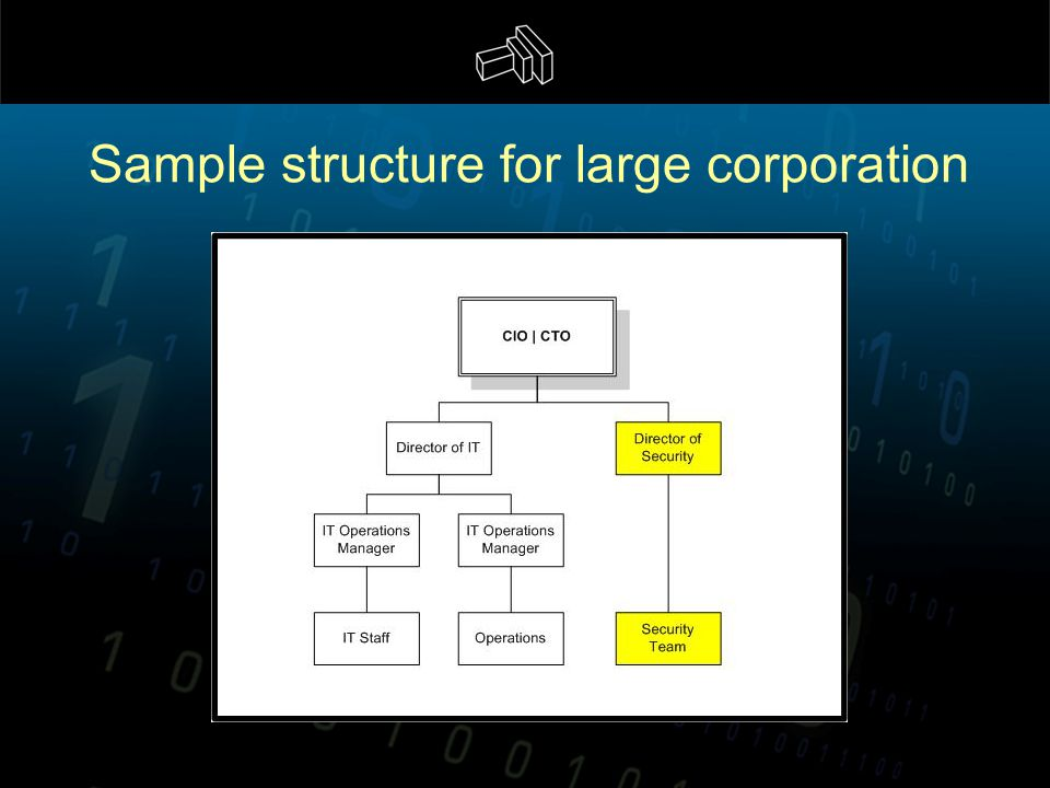 Sample structure for large corporation