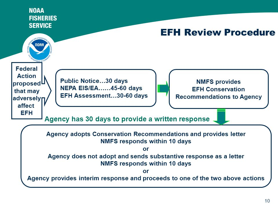 10 EFH Review Procedure NMFS provides EFH Conservation Recommendations to Agency Agency adopts Conservation Recommendations and provides letter NMFS responds within 10 days or Agency does not adopt and sends substantive response as a letter NMFS responds within 10 days or Agency provides interim response and proceeds to one of the two above actions Federal Action proposed that may adversely affect EFH Public Notice…30 days NEPA EIS/EA……45-60 days EFH Assessment…30-60 days Agency has 30 days to provide a written response