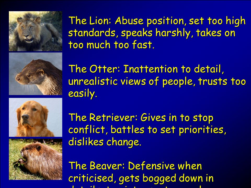 The Lion: Abuse position, set too high standards, speaks harshly, takes on too much too fast.