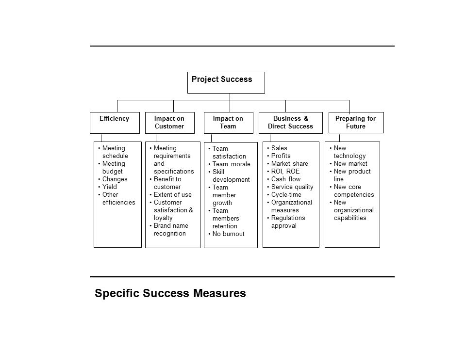 Impact on Customer Impact on Team Business & Direct Success Project Success Meeting schedule Meeting budget Changes Yield Other efficiencies Meeting r