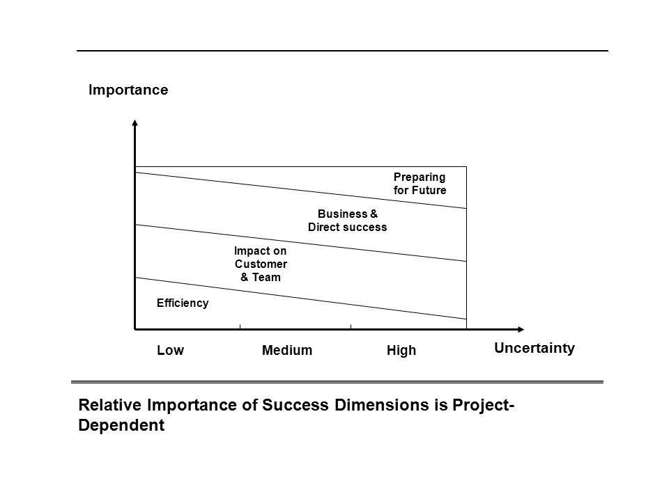 Efficiency Impact on Customer & Team Business & Direct success Preparing for Future Uncertainty Importance Relative Importance of Success Dimensions i
