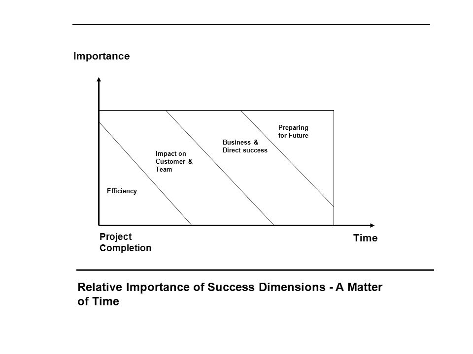 Efficiency Impact on Customer & Team Business & Direct success Preparing for Future Project Completion Time Importance Relative Importance of Success