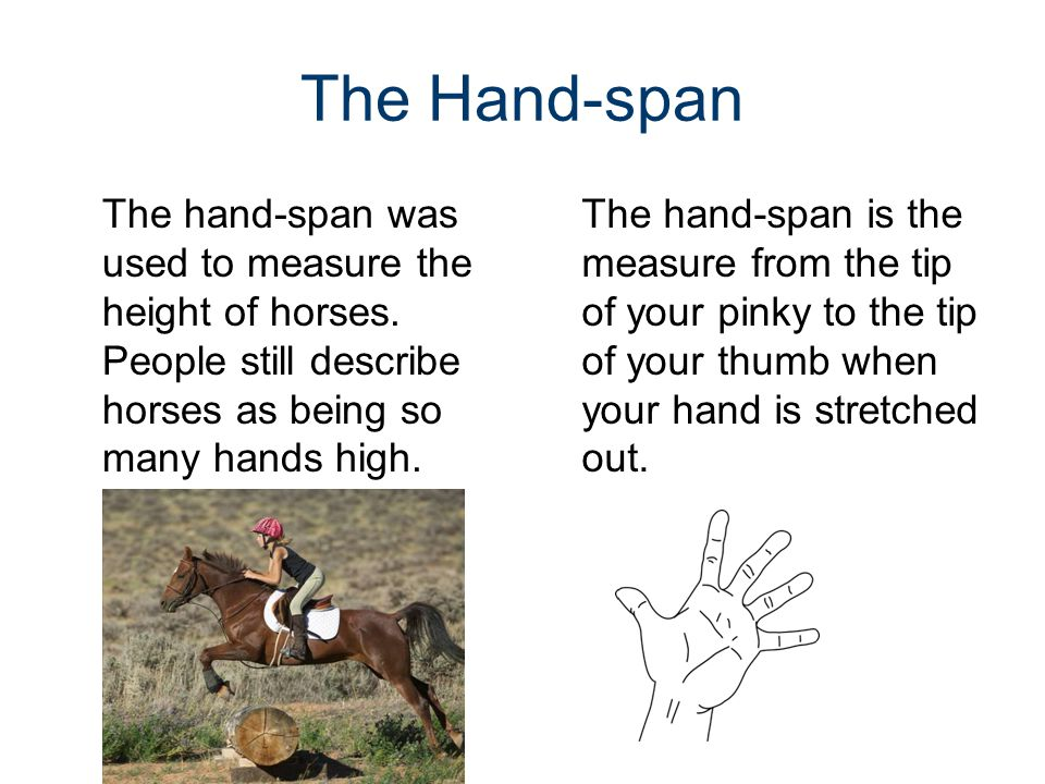 The Hand-span The hand-span was used to measure the height of horses. People still describe horses as being so many hands high. The hand-span is the m