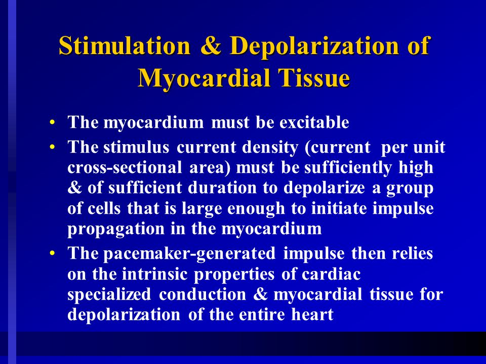Stimulation & Depolarization of Myocardial Tissue The myocardium must be excitable The stimulus current density (current per unit cross-sectional area