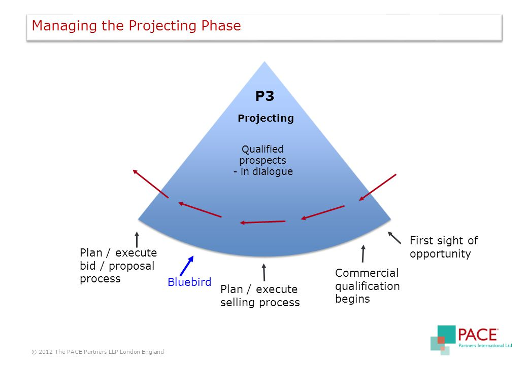 Managing the Projecting Phase © 2012 The PACE Partners LLP London England P3 Projecting Qualified prospects - in dialogue First sight of opportunity Plan / execute selling process Commercial qualification begins Plan / execute bid / proposal process Bluebird