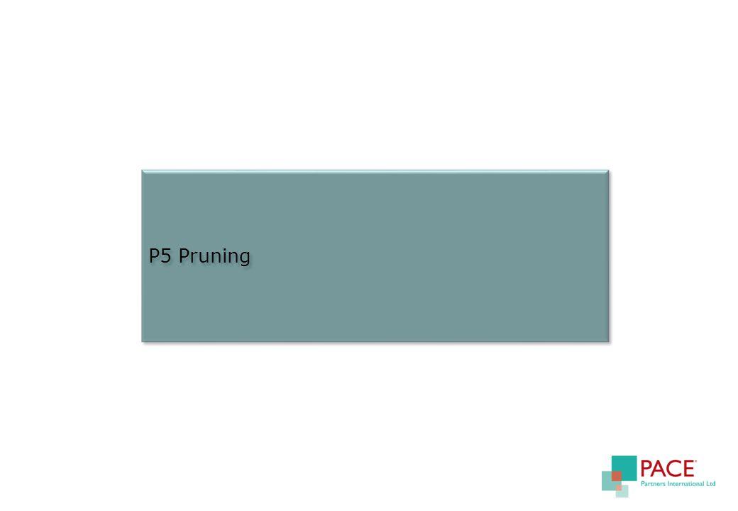 P5 Pruning