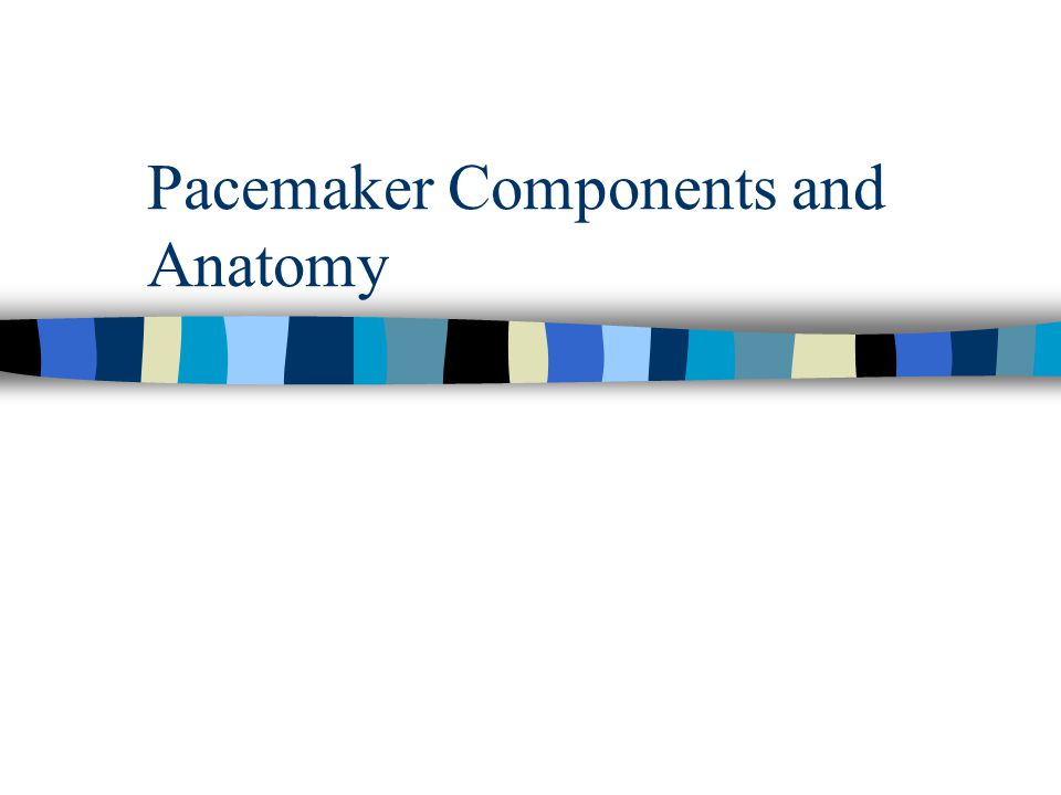 Pacemaker Components and Anatomy