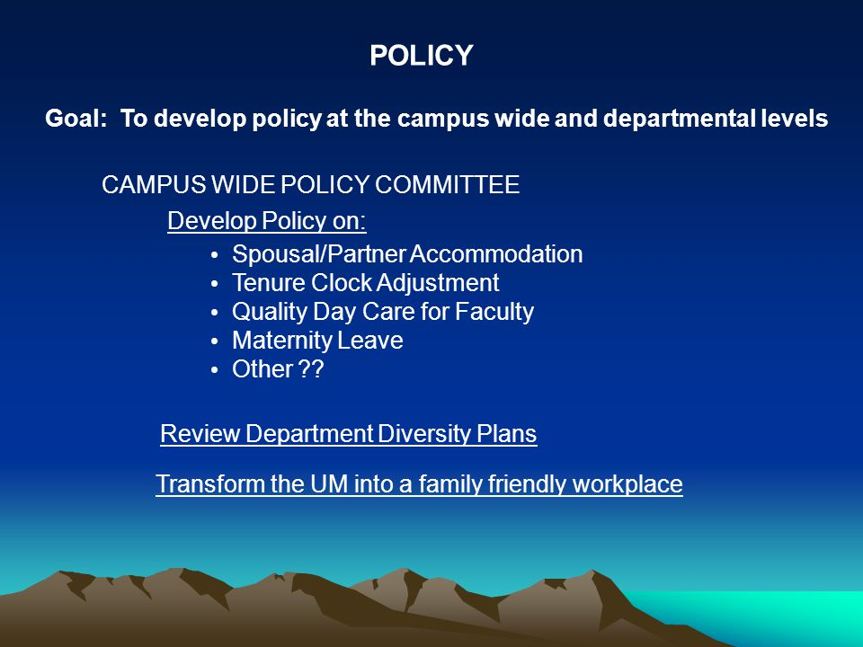 POLICY Develop Policy on: Spousal/Partner Accommodation Tenure Clock Adjustment Quality Day Care for Faculty Maternity Leave Other .