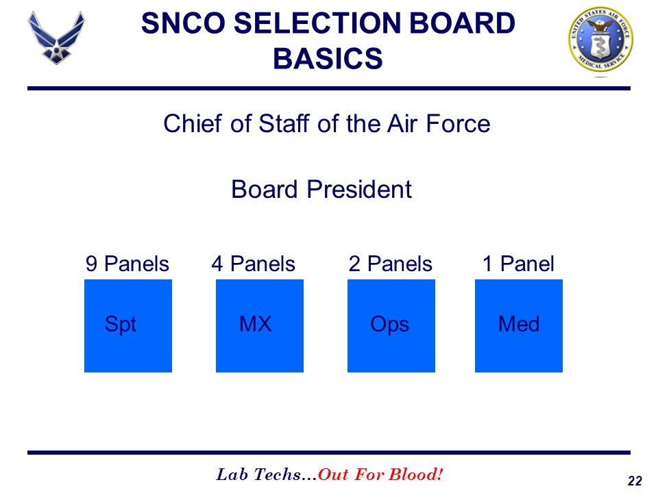 22 Lab Techs…Out For Blood! SNCO SELECTION BOARD BASICS Chief of Staff of the Air Force Board President 2 Panels Ops 9 Panels Spt 4 Panels MX 1 Panel