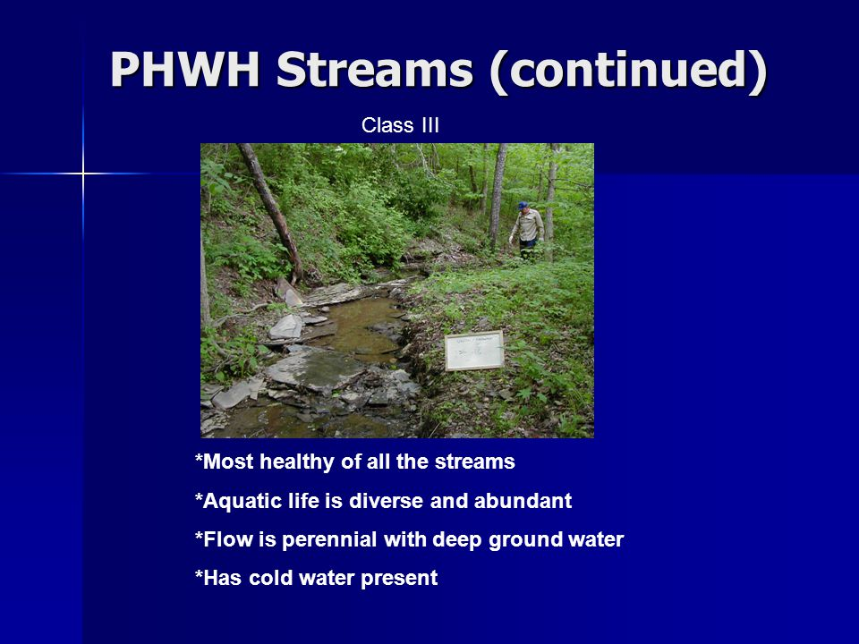 PHWH Streams (continued) *Most healthy of all the streams *Aquatic life is diverse and abundant *Flow is perennial with deep ground water *Has cold water present Class III