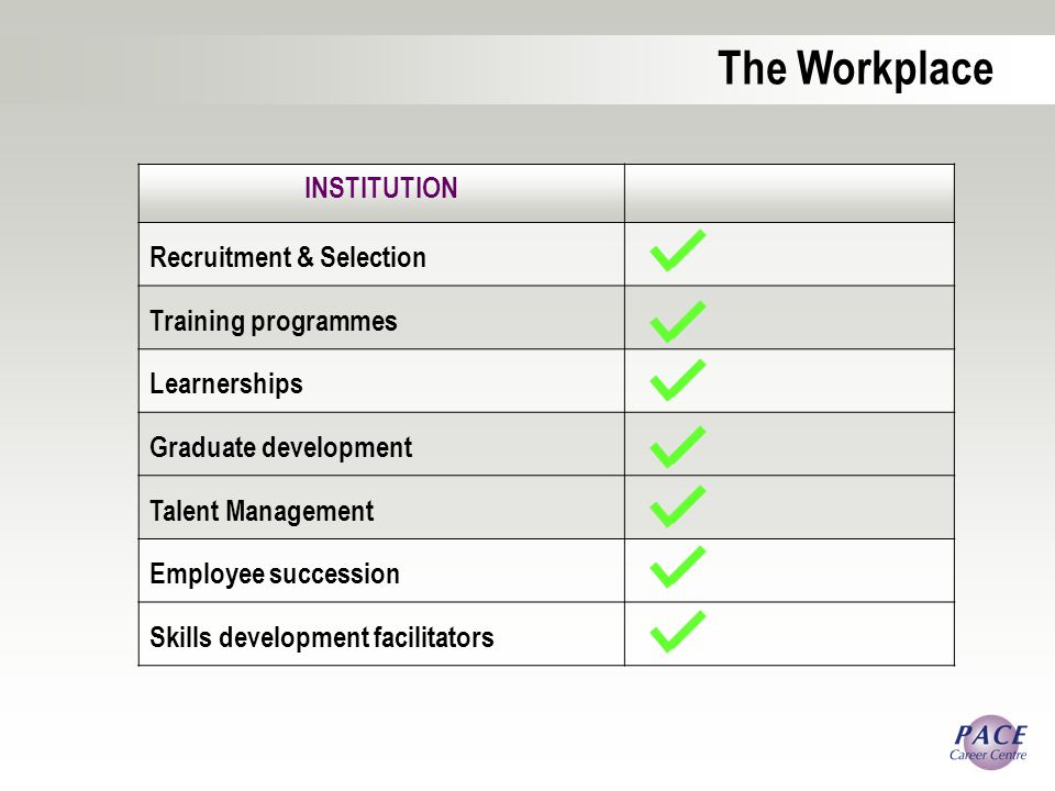 The Workplace INSTITUTION Recruitment & Selection Training programmes Learnerships Graduate development Talent Management Employee succession Skills development facilitators