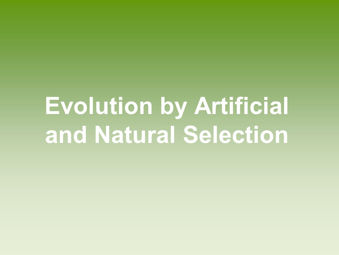 Evolution by Artificial Selection Evolution by artificial selection―when humans determine which individuals breed Good examples are the more than 400 modern breeds of dogs, and 800 breeds of domestic cattle.