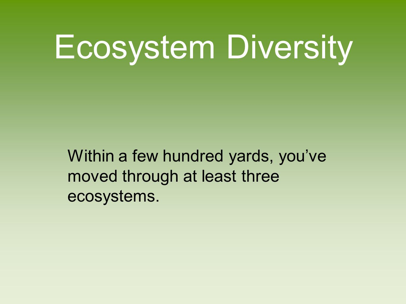 Species Diversity How many species did you see.Many...