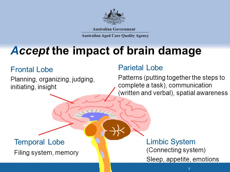 Accept the impact of brain damage Frontal Lobe Planning, organizing, judging, initiating, insight Parietal Lobe Patterns (putting together the steps to complete a task), communication (written and verbal), spatial awareness Temporal Lobe Filing system, memory Limbic System (Connecting system) Sleep, appetite, emotions 7