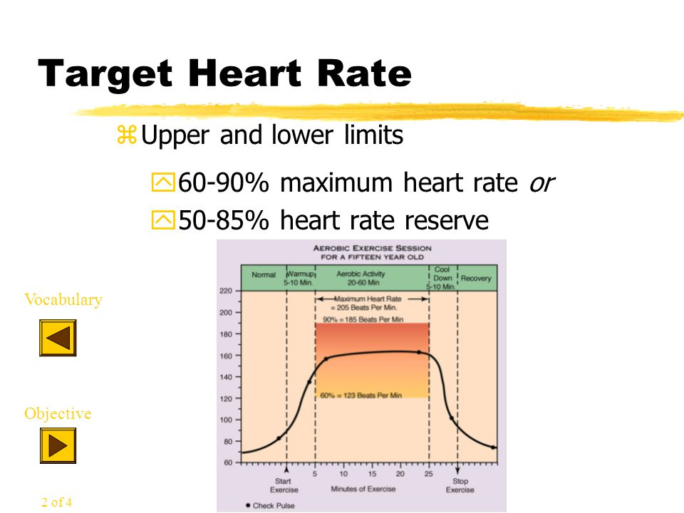 Target Heart Rate zUpper and lower limits y60-90% maximum heart rate or y50-85% heart rate reserve Vocabulary Objective 2 of 4