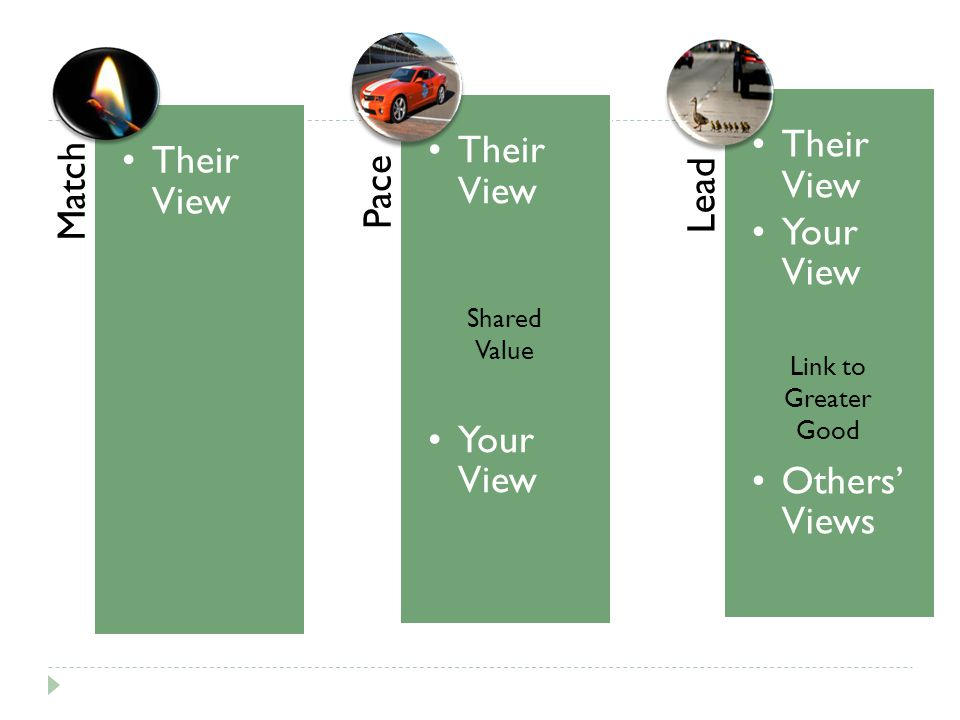 Match Their View Pace Their View Your View Lead Their View Your View Others' Views Shared Value Link to Greater Good