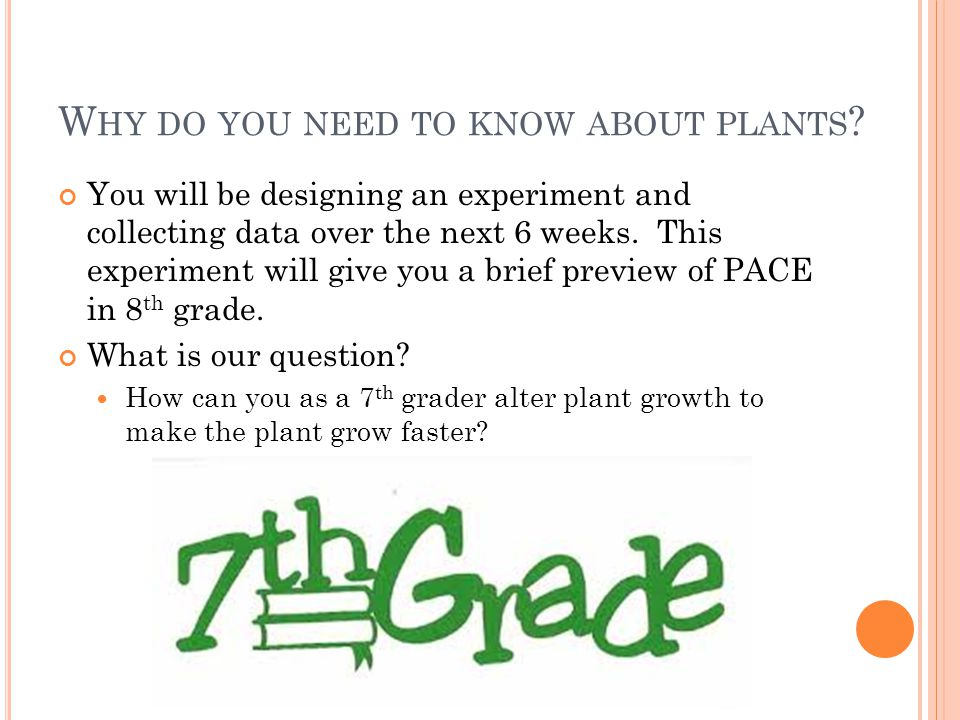 W HY DO YOU NEED TO KNOW ABOUT PLANTS .