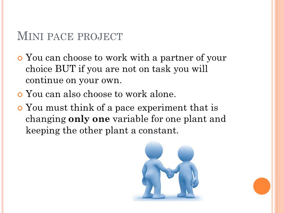 M INI PACE PROJECT You can choose to work with a partner of your choice BUT if you are not on task you will continue on your own.
