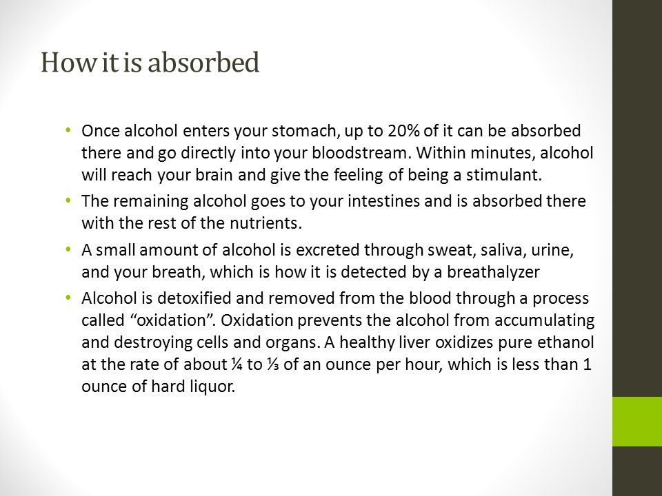 How it is absorbed Once alcohol enters your stomach, up to 20% of it can be absorbed there and go directly into your bloodstream.