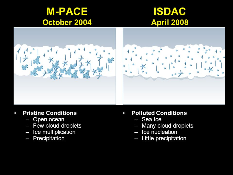 M-PACE October 2004 Pristine Conditions –Open ocean –Few cloud droplets –Ice multiplication –Precipitation Polluted Conditions –Sea Ice –Many cloud dr