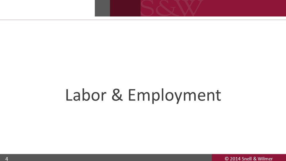 4 Labor & Employment