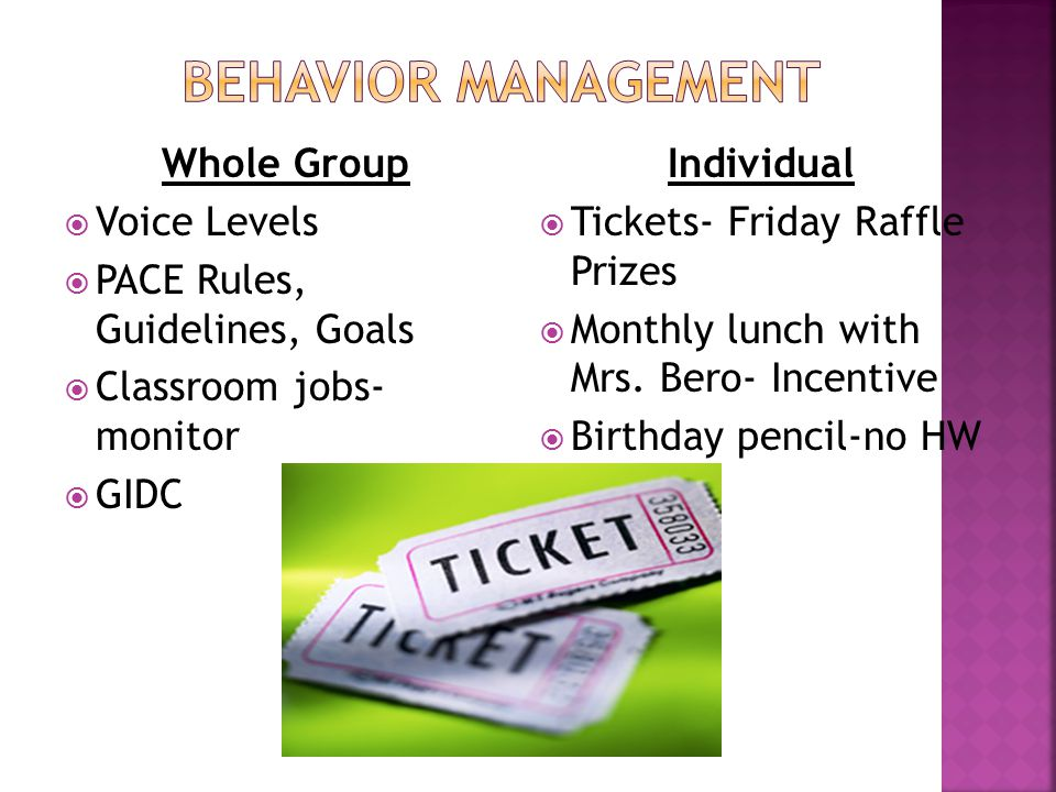 Whole Group  Voice Levels  PACE Rules, Guidelines, Goals  Classroom jobs- monitor  GIDC Individual  Tickets- Friday Raffle Prizes  Monthly lunch
