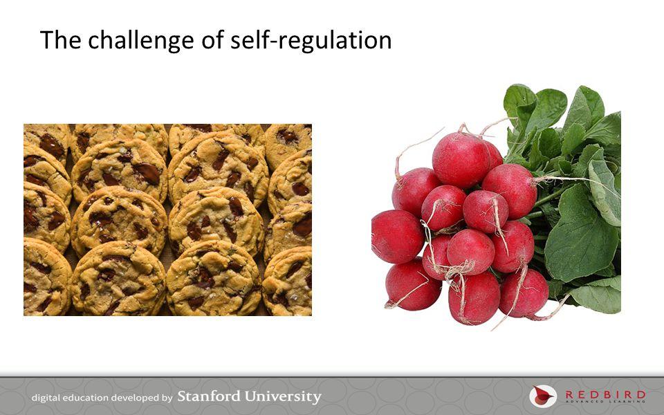 The challenge of self-regulation