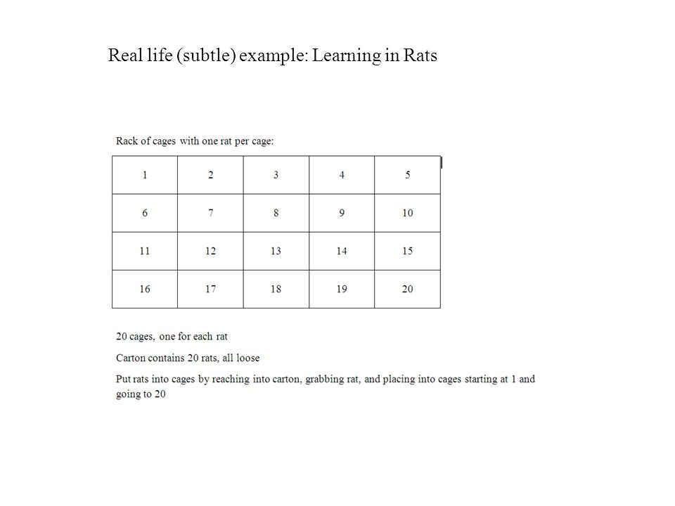 Real life (subtle) example: Learning in Rats