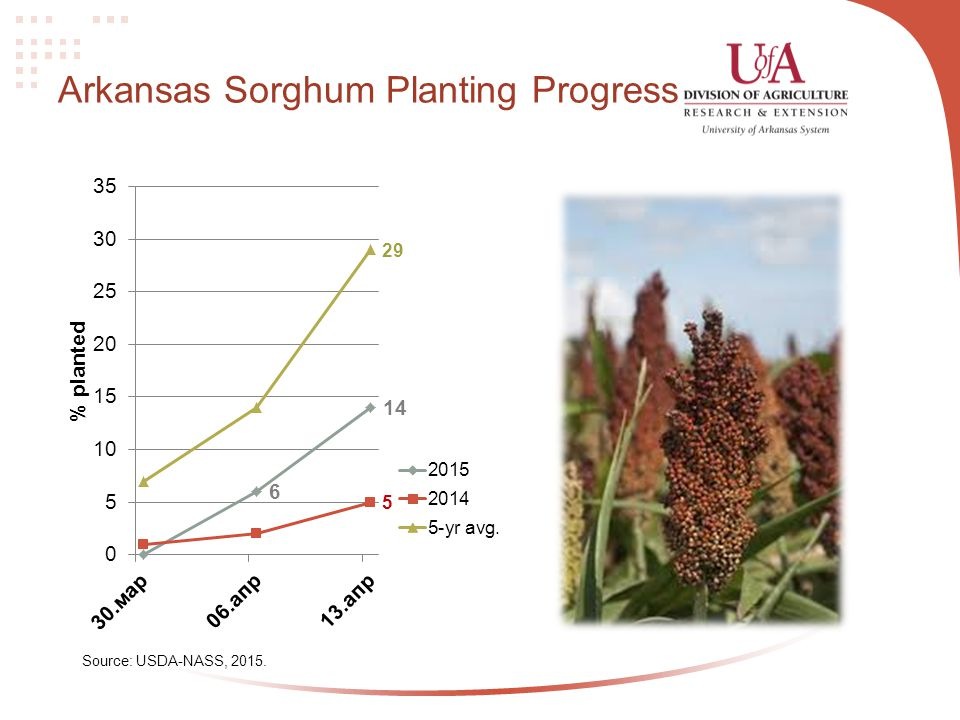 Arkansas Sorghum Planting Progress Source: USDA-NASS, 2015.