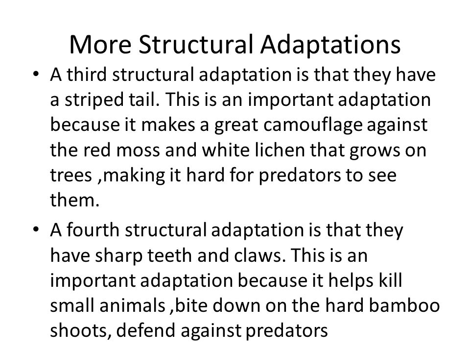 More Structural Adaptations A third structural adaptation is that they have a striped tail.