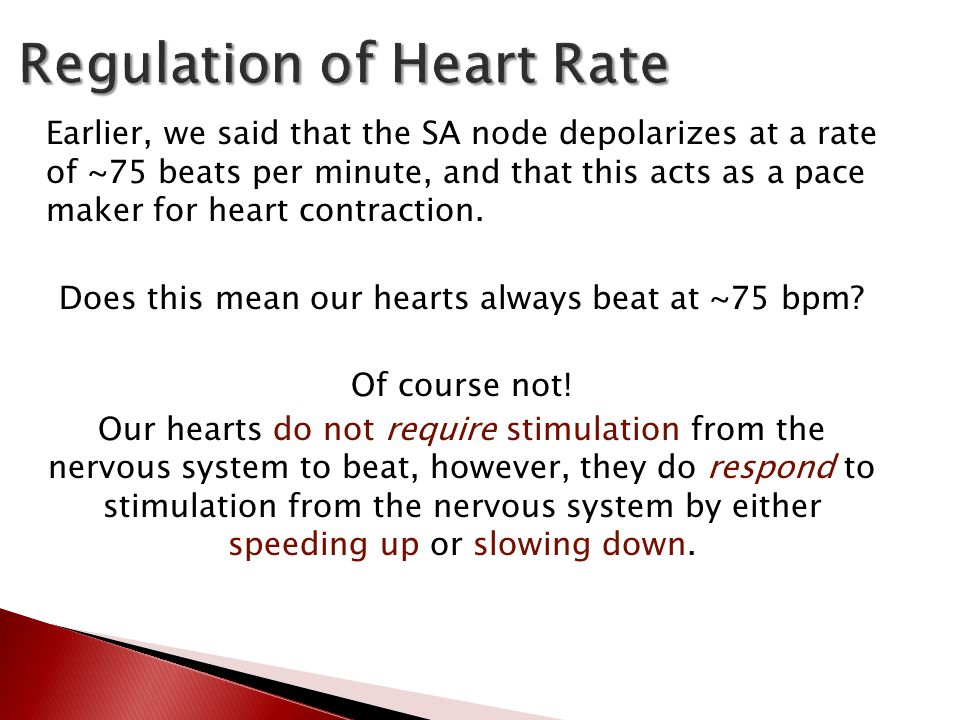 Earlier, we said that the SA node depolarizes at a rate of ~75 beats per minute, and that this acts as a pace maker for heart contraction.