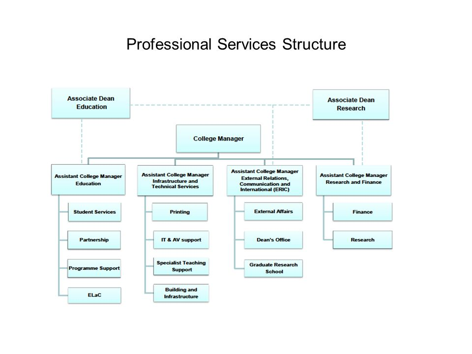 Professional Services Structure