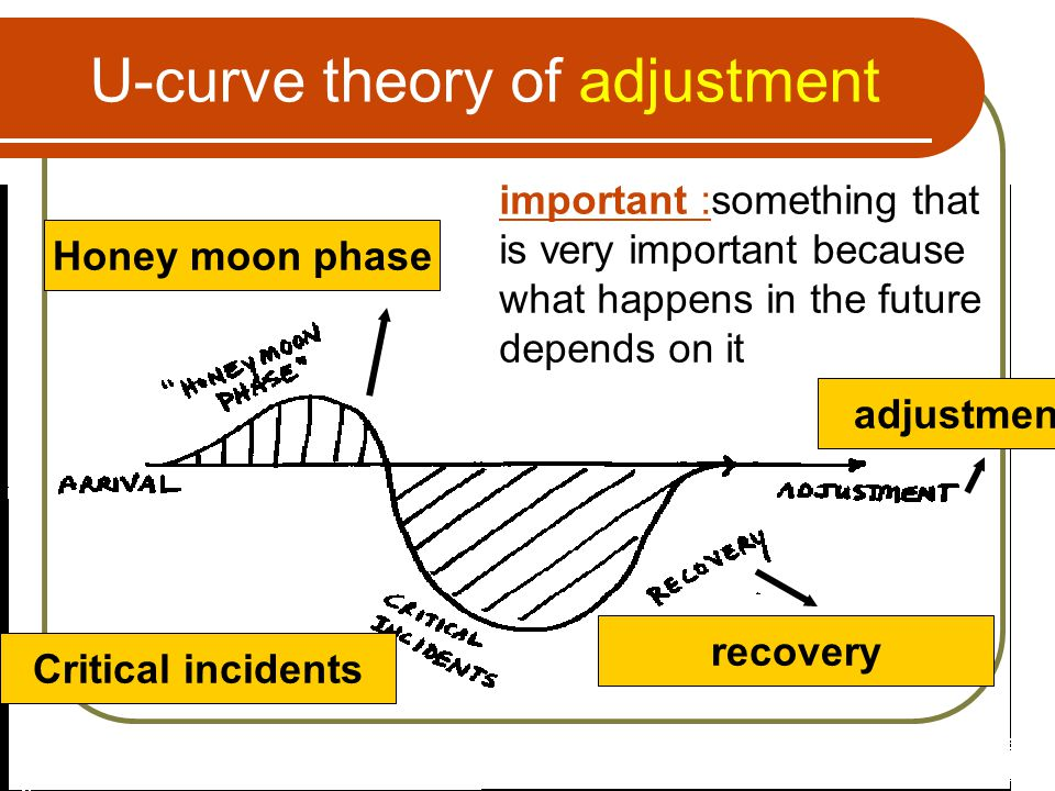 U-curve theory of adjustment Honey moon phase important :something that is very important because what happens in the future depends on it Critical in