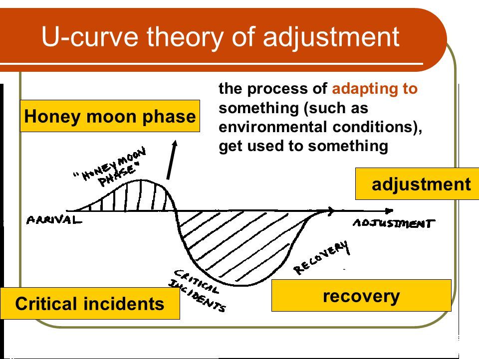 U-curve theory of adjustment Honey moon phase the process of adapting to something (such as environmental conditions), get used to something Critical incidents recovery adjustment