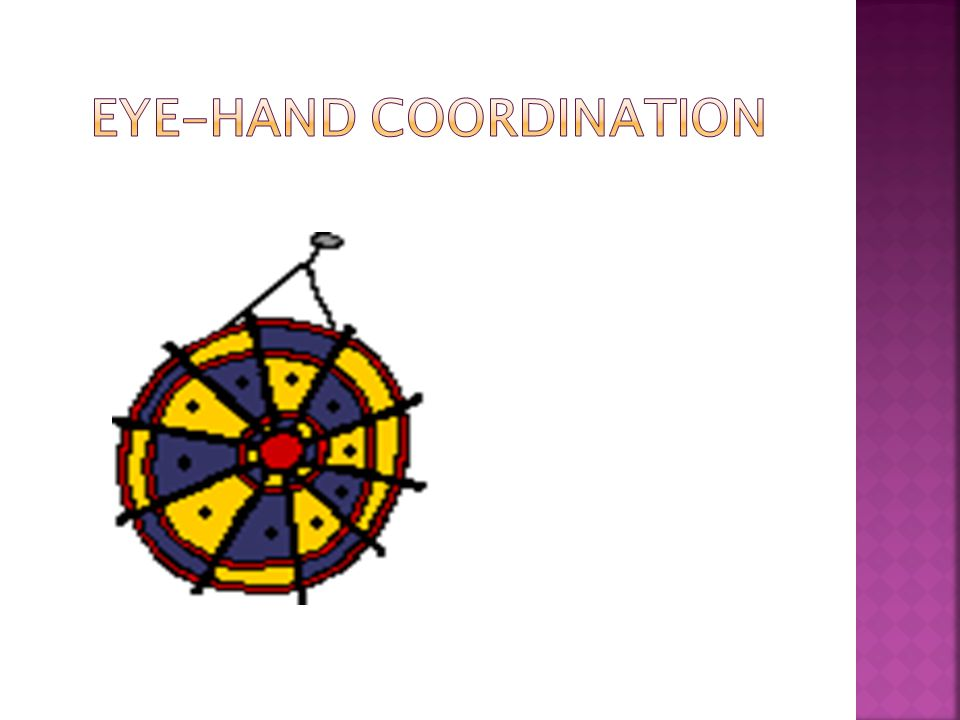  Coordinated control of eye movements with hand movement  The processing of visual input to guide reaching and grasping along with the use of proprioception of the hands to guide the eyes  Affects fine motor, reading, writing, self care, attention as well as gross motor, sitting, sports, physical education, playground