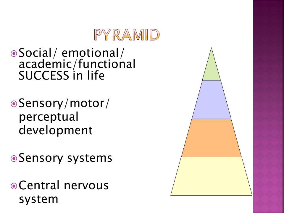  Social/ emotional/ academic/functional SUCCESS in life  Sensory/motor/ perceptual development  Sensory systems  Central nervous system